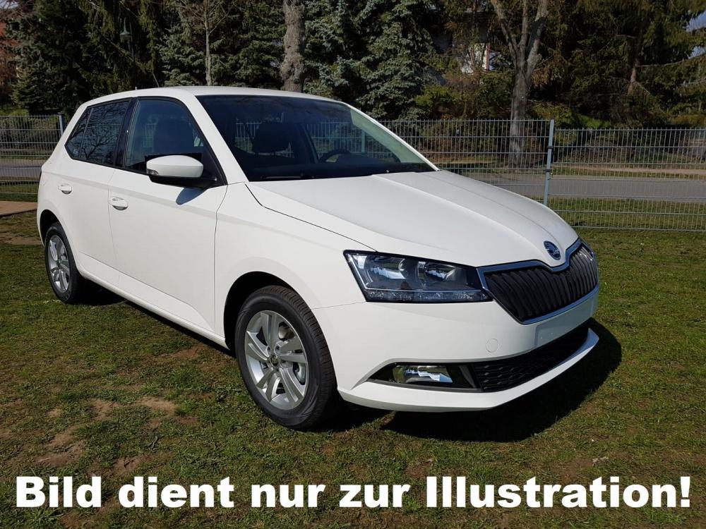 SKODA FABIA 1.0 MPI 60 PS ACTIVE S&S Autosoft BV, Enschede